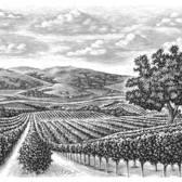 Steven Noble - Agriculture, Black & White, Engraving, Environmental, Etching, Landscape, Pen & Ink, Scratch Board, Woodcut